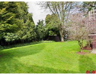 """Photo 9: 19719 50A Ave in Langley: Langley City House for sale in """"Eagle Heights"""" : MLS®# F2708352"""