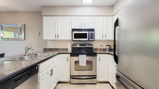 """Photo 5: 113 11595 FRASER Street in Maple Ridge: East Central Condo for sale in """"BRICKWOOD PLACE"""" : MLS®# R2607615"""