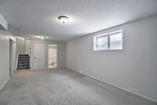 Photo 33: 253 Elgin Way SE in Calgary: McKenzie Towne Detached for sale : MLS®# A1087799