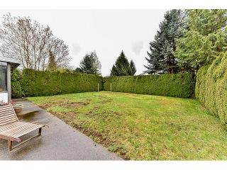 "Photo 19: 15518 93RD Avenue in Surrey: Fleetwood Tynehead House for sale in ""BERKSHIRE PARK"" : MLS®# R2052832"