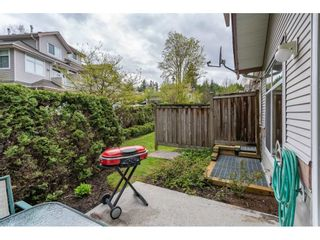 Photo 20: 20 11860 RIVER ROAD in Surrey: Royal Heights Townhouse for sale (North Surrey)  : MLS®# R2360071