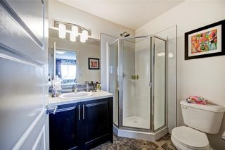 Photo 26: 228 Red Embers Way NE in Calgary: Redstone House for sale : MLS®# C4135451