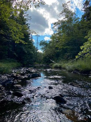 Photo 10: Lot Highway 4 False Bay Brook in River Bourgeois: 305-Richmond County / St. Peters & Area Vacant Land for sale (Highland Region)  : MLS®# 202123291