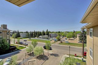 Photo 15: 7909 71 ST NW in Edmonton: Zone 17 Condo for sale
