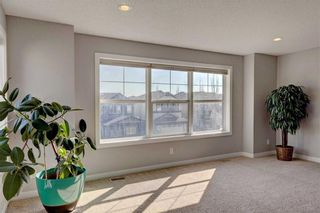 Photo 25: 205 CHAPALINA Mews SE in Calgary: Chaparral Detached for sale : MLS®# C4241591