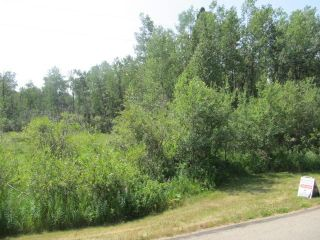 Photo 4: 398 52152 RR 210: Rural Strathcona County Rural Land/Vacant Lot for sale : MLS®# E4254227