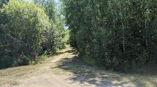 Photo 1: 41047 103 N Road in Grand Marais: Jackfish Lake Residential for sale (R27)  : MLS®# 202120565
