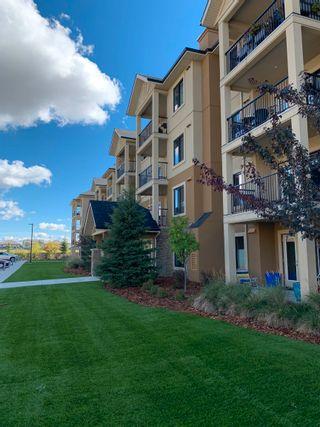 Photo 3: 401 1031 173 Street in Edmonton: Zone 56 Condo for sale : MLS®# E4262432