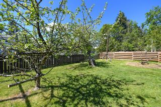 Photo 12: 519 Pritchard Rd in : CV Comox (Town of) House for sale (Comox Valley)  : MLS®# 874878