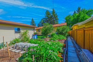 Photo 34: 120 Silver Springs Drive NW in Calgary: Silver Springs Detached for sale : MLS®# A1144635