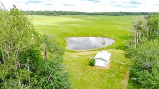 Photo 47: 52111 RGE RD 222: Rural Strathcona County House for sale : MLS®# E4250505
