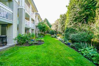 """Photo 15: 335 22020 49 Avenue in Langley: Murrayville Condo for sale in """"MURRAY GREEN"""" : MLS®# R2486605"""