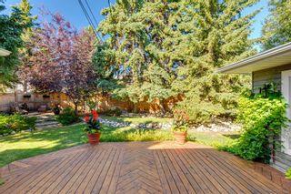 Photo 44: 7311 11 Street SW in Calgary: Kelvin Grove Detached for sale : MLS®# A1049038