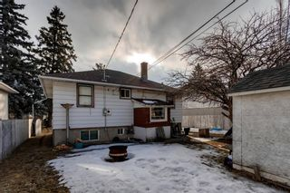 Photo 10: 1527 42 Street SE in Calgary: Forest Lawn Detached for sale : MLS®# A1079125