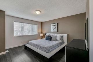 Photo 26: 18 Copperfield Crescent SE in Calgary: Copperfield Detached for sale : MLS®# A1141643