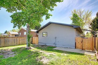 Photo 28: 3423 30A Avenue SE in Calgary: Dover Detached for sale : MLS®# A1114243