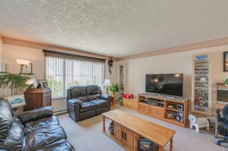 Photo 7: 629 Judah St in : SW Glanford House for sale (Saanich West)  : MLS®# 874110