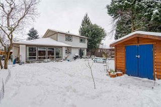 Photo 19: 15318 21 AVENUE in Surrey: King George Corridor House for sale (South Surrey White Rock)  : MLS®# R2428864