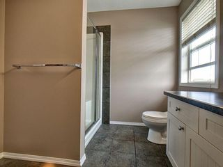 Photo 14: 305 Bayside Place SW: Airdrie Detached for sale : MLS®# A1116379