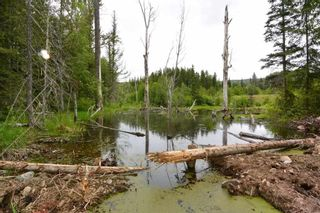 Photo 33: DL 1335A 37 Highway: Kitwanga Land for sale (Smithers And Area (Zone 54))  : MLS®# R2471833