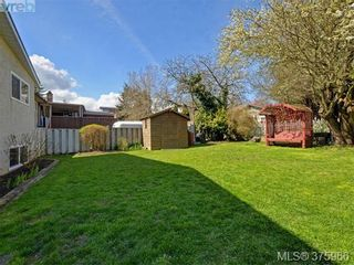 Photo 19: 244 Sims Ave in VICTORIA: SW Gateway House for sale (Saanich West)  : MLS®# 754713
