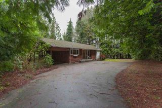 Photo 1: 12339 240 Street in Maple Ridge: East Central House for sale : MLS®# R2335485