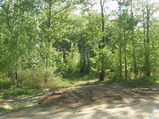 Photo 4: Lot 10 Delaronde Way in Delaronde Lake: Lot/Land for sale : MLS®# SK851495