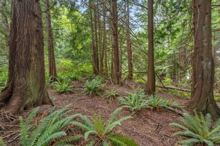 Photo 22: LOT 9 West Coast Rd in : Sk West Coast Rd Land for sale (Sooke)  : MLS®# 876669