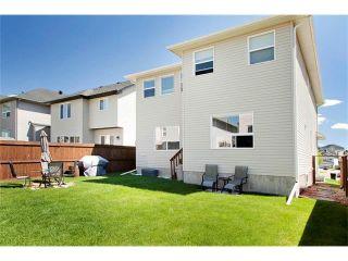 Photo 37: 129 ROYAL BIRCH Bay NW in Calgary: Royal Oak House for sale : MLS®# C4074421