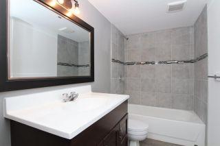 "Photo 12: 12012 205A Street in Maple Ridge: Northwest Maple Ridge House for sale in ""WEST MAPLE RIDGE"" : MLS®# R2361637"