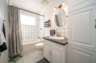 Photo 13:  in Edmonton: Zone 22 House for sale : MLS®# E4232295