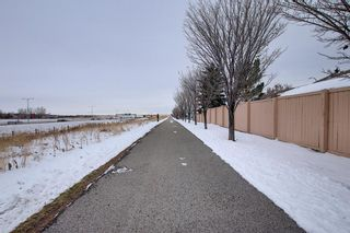 Photo 43: 47 Appleburn Close SE in Calgary: Applewood Park Detached for sale : MLS®# A1049300