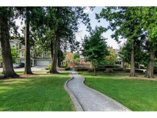 """Photo 3: 52 20460 66TH Avenue in Langley: Willoughby Heights Townhouse for sale in """"WILLOWS EDGE"""" : MLS®# F1418966"""