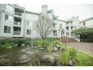 Photo 19: # 122 7453 MOFFATT RD in Richmond: Brighouse South Condo for sale : MLS®# V1088055