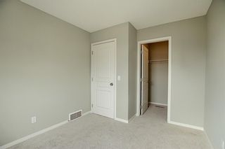 Photo 33: 484 COPPERPOND BV SE in Calgary: Copperfield House for sale : MLS®# C4292971