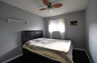 Photo 15: 3651 31A Street in Edmonton: Zone 30 House for sale : MLS®# E4215027