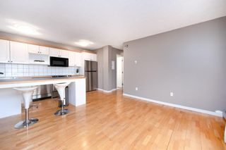 Photo 13: 304 126 24 Avenue SW in Calgary: Mission Apartment for sale : MLS®# A1146945