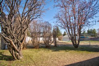 Photo 3: 7724 46 Avenue NW in Calgary: Bowness Detached for sale : MLS®# A1139453