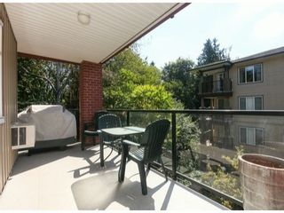 Photo 16: 310 5516 198TH Street in Langley: Home for sale : MLS®# F1421347
