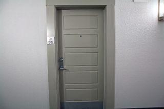 Photo 25: 312 5510 SCHONSEE Drive in Edmonton: Zone 28 Condo for sale : MLS®# E4265102