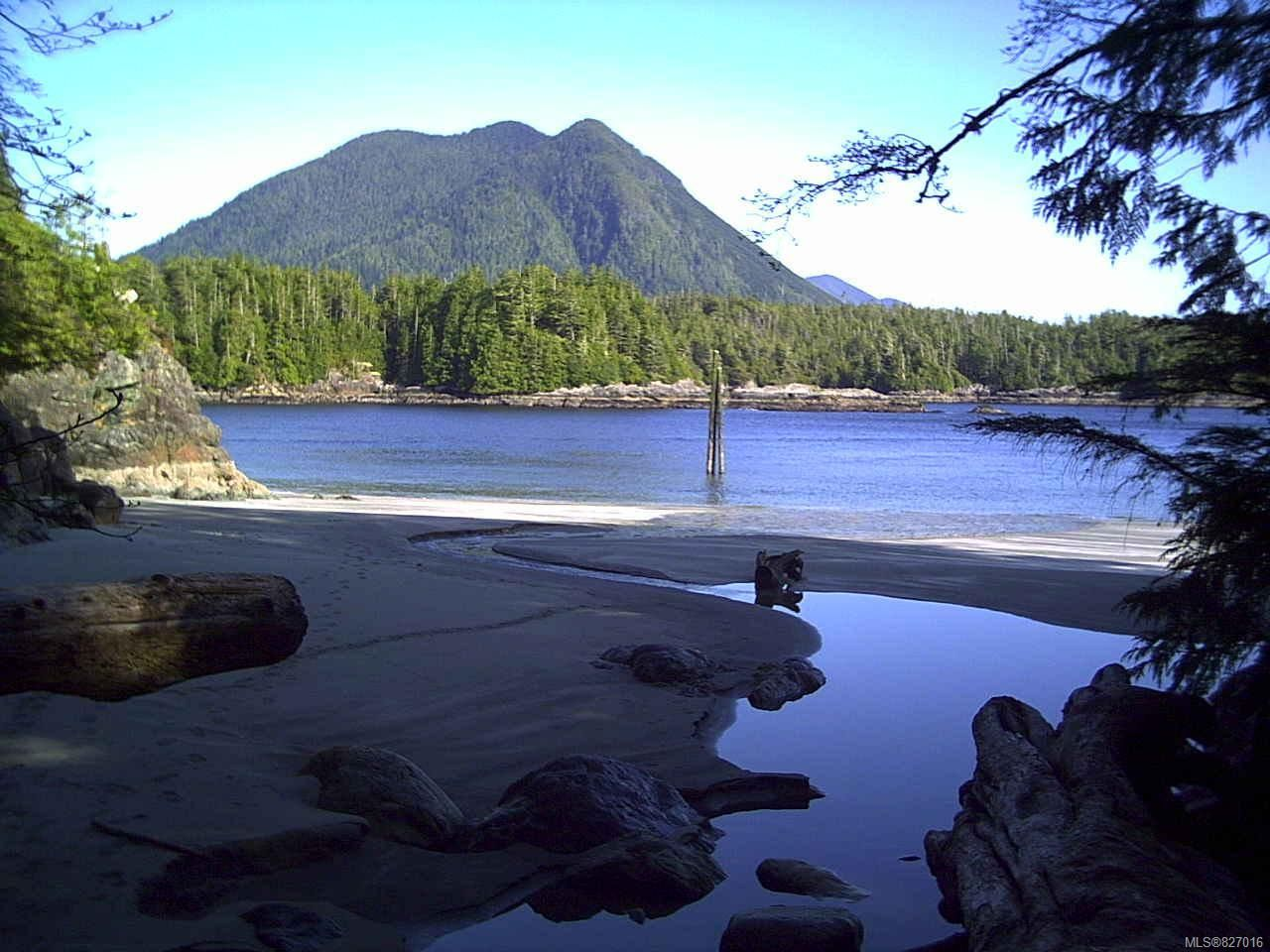 Main Photo: LT 2 Catface Mountain in TOFINO: PA Tofino Land for sale (Port Alberni)  : MLS®# 827016