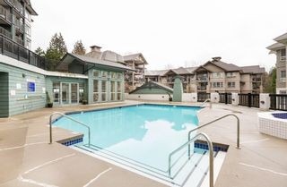 """Photo 19: 147 9133 GOVERNMENT Street in Burnaby: Government Road Townhouse for sale in """"TERRAMOR"""" (Burnaby North)  : MLS®# R2168245"""