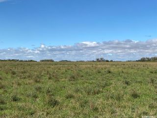 Photo 9: Good Lake Land in Good Lake: Farm for sale (Good Lake Rm No. 274)  : MLS®# SK873878