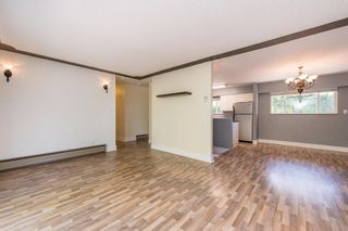 Photo 14: 49331 YALE Road in Chilliwack: East Chilliwack House for sale : MLS®# R2605420