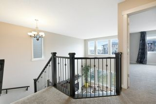 Photo 23: 3954 CLAXTON Loop in Edmonton: Zone 55 House for sale : MLS®# E4226999