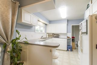 Photo 17: 3475 ST. ANNE Street in Port Coquitlam: Glenwood PQ House for sale : MLS®# R2204420