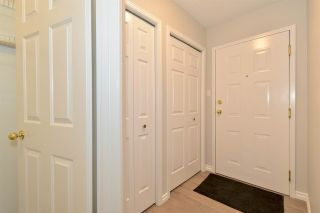 Photo 43: 203 10504 77 Avenue in Edmonton: Zone 15 Condo for sale : MLS®# E4229459