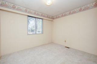 Photo 23: 21260 COOK Avenue in Maple Ridge: Southwest Maple Ridge House for sale : MLS®# R2530636