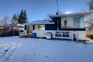 Photo 42: 71 Hillgrove Drive SW in Calgary: Haysboro Detached for sale : MLS®# A1060147