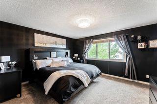 Photo 17: 5 Cimarron Vista Circle: Okotoks Detached for sale : MLS®# A1117280